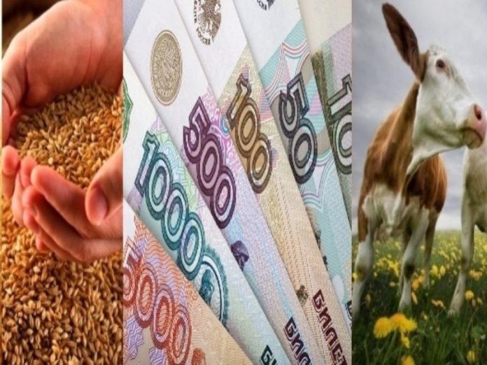 Патрушев: средняя зарплата в сельском хозяйстве достигла 30 тыс. рублей