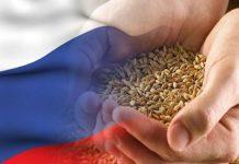 У России есть все ресурсы для получения статуса ведущей аграрной державы