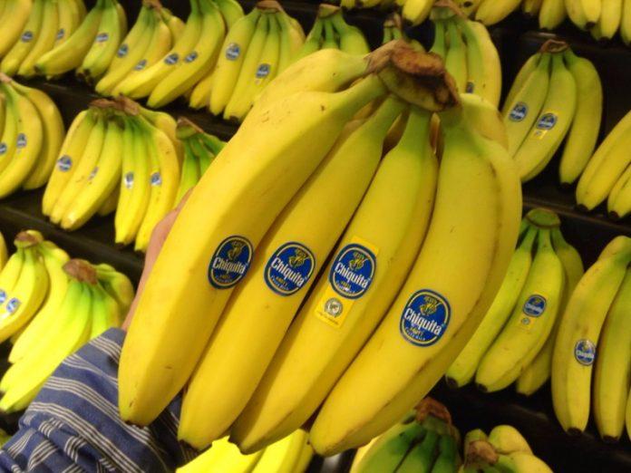 Россиян предупреждают о возможном исчезновении бананов