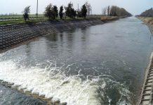 Водная блокада Крыма нанесла многомиллиардный ущерб сельскому хозяйству полуострова