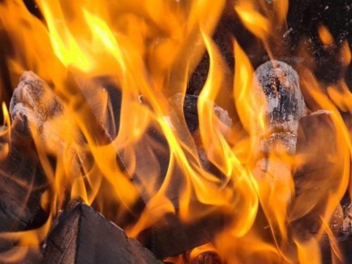Жертвами пожара в частном коровнике в Якутии стали более 100 сельхозживотных