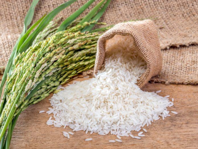 Производители предупреждают о подорожании риса к концу года