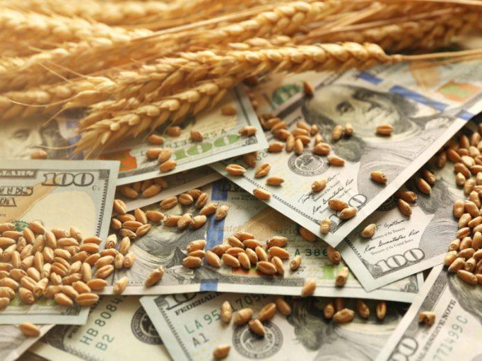 Причины скачков цен на зерно на мировом рынке