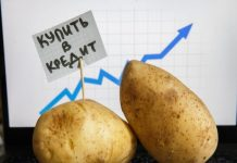 Картофель стал лидером по росту цен среди всех продуктов