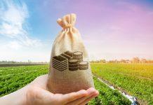Минсельхоз сократит отстающим субъектам РФ размер запланированных субсидий