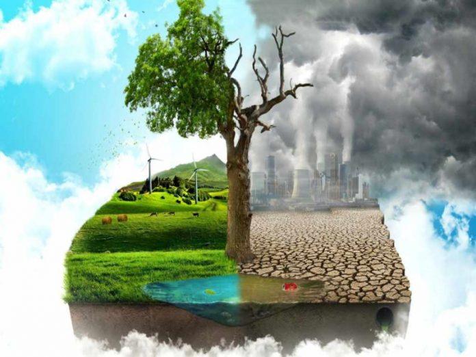 Прибыль от использования заброшенных сельхозземель может составить до $50 млрд в год