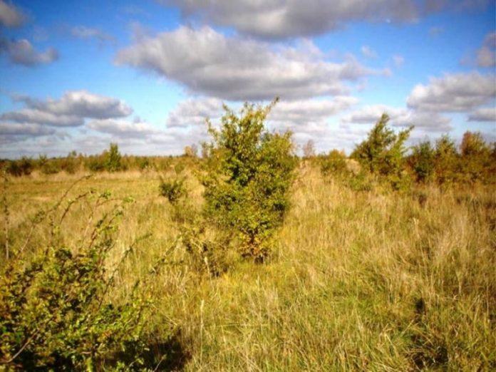 Ярославские землевладельцы отказываются от своих участков