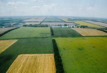 Власти Краснодарского края запретили перевод сельхозземель под жилую застройку