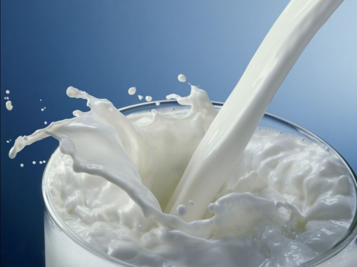 Производители молока обеспокоены низкой стоимостью продукта
