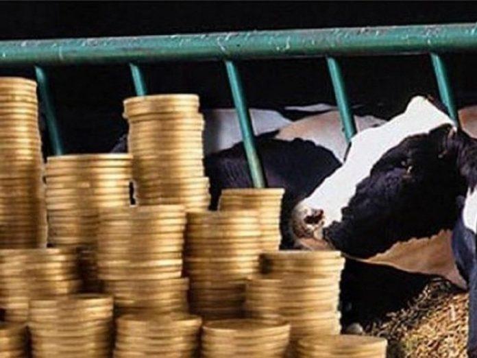 Евросоюз: благополучие животных или успешность сельского хозяйства?