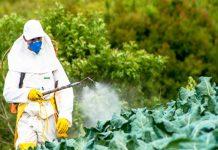 В России усилили контроль за ввозом пестицидов и агрохимикатов