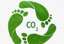 Инновации в сельском хозяйстве могут снизить выбросы углекислого газа