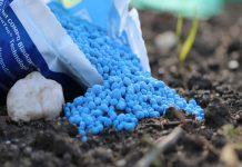 Патрушев: необходимо регулирование отношений производителей удобрений и аграриев