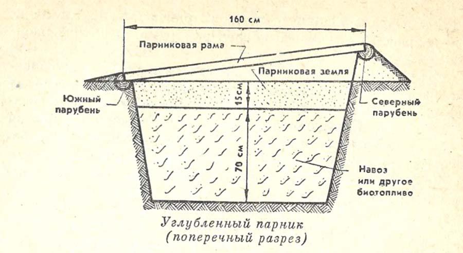 Простейшие сооружения защищенного грунта