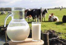 Жители сел Алтайского края возмущены низкими закупочными ценами на молоко