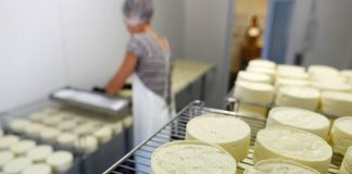 Мельниченко: в Свердловской области нет молока для производства качественного сыра