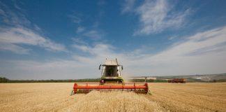 Прогноз Гидрометцентра по урожаю зерновых является информационным вбросом — Минсельхоз
