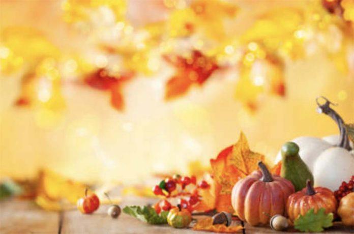 Календарь овощевода Ноябрь