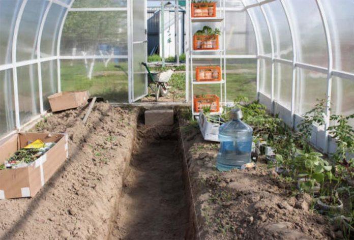 Подготовка к сезону выращивания овощей