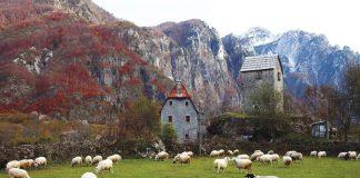 Протестующие фермеры Черногории перешли от просьбы к угрозам