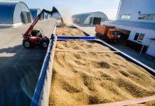 Приостановлена выдача субсидий на транспортировку продукции АПК