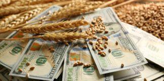 Дополнительные доходы бюджета РФ от экспортных пошлин на зерно с 15 февраля по 9 июля составили 15,4 миллиарда рублей.