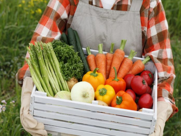 Торговые сети не пускают на свои прилавки продукцию фермеров