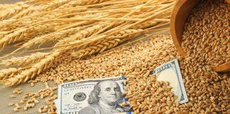 В России возобновляются биржевые торги зерном из интервенционного фонда