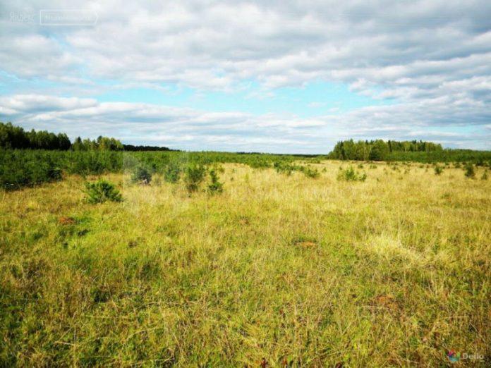 Власти Ивановской области будут изымать сельхозземли у неэффективных собственников