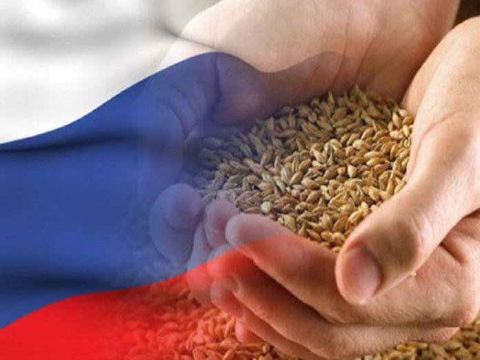 Минсельхоз: в интервенционном фонде необходимо создать неснижаемый запас зерна
