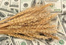 Из-за плавающей экспортной пошлины сельхозпроизводители в июне недополучили порядка $90 млн