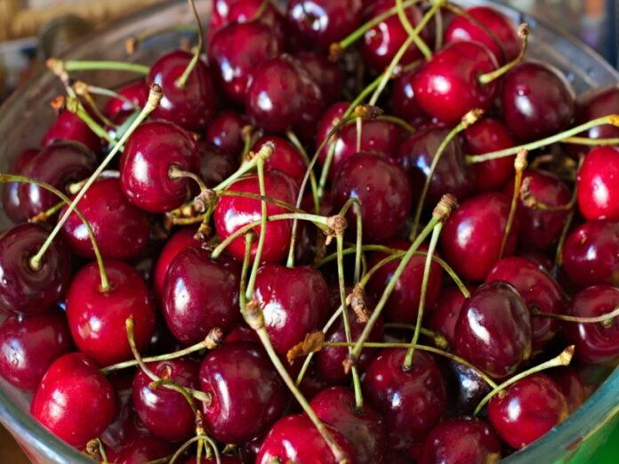 Торговые сети Кубани предпочитают продавать импортные плоды и ягоды