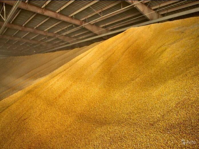 Три дня подряд Россия не смогла продать интервенционное зерно на Московской бирже