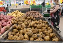 Аналитики констатируют падение доходов россиян на полтонны картошки