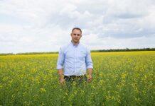В России отмечается рост культуры возделывания озимого рапса