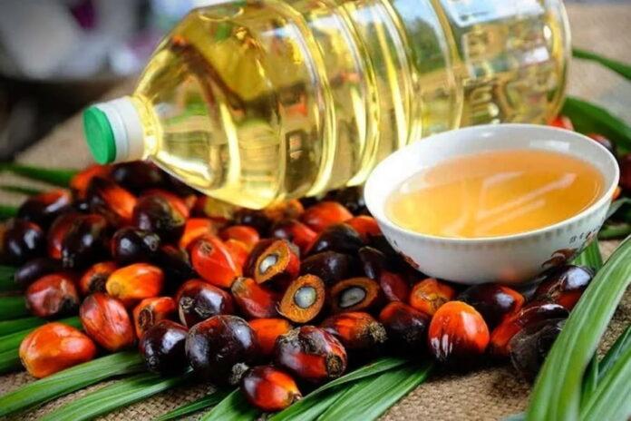 Россия существенно увеличила закупки пальмового масла