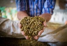 Рост цен на кормовые компоненты уменьшает продуктивность коров
