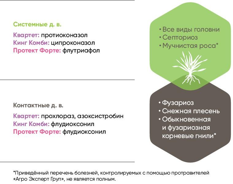 Стратегия выбора протравителя семян