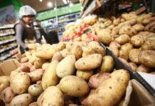 Картофель нового урожая – когда ждать повышения цен в России?