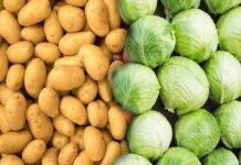 В Саратовской области картофель и капусту считают деликатесом