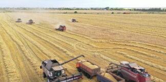 ООН: поддержка сельского хозяйства приводит к сильному колебанию цен и наносит вред окружающей среде