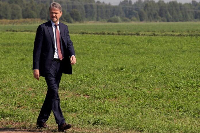 Холдинг Ткачева увеличивает земельный банк