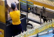 В Воронежской области Перелешинский маслозавод может стать банкротом