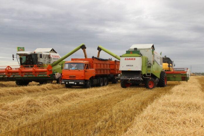 В Татарстане отмечается снижение количества продукции сельского хозяйства