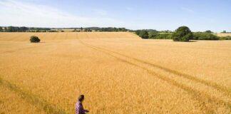 Биотехнологическая компания Gaïago объявили о соглашении с Corteva Agriscience в области разработки биофунгицидов для фермеров