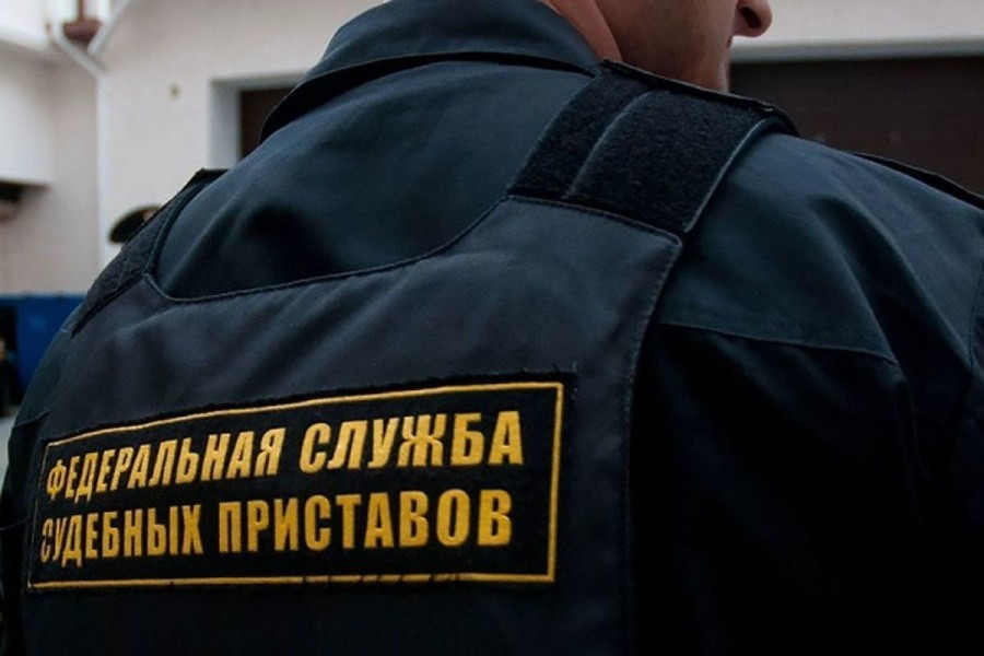 У чувашского фермера приставы арестовали урожай
