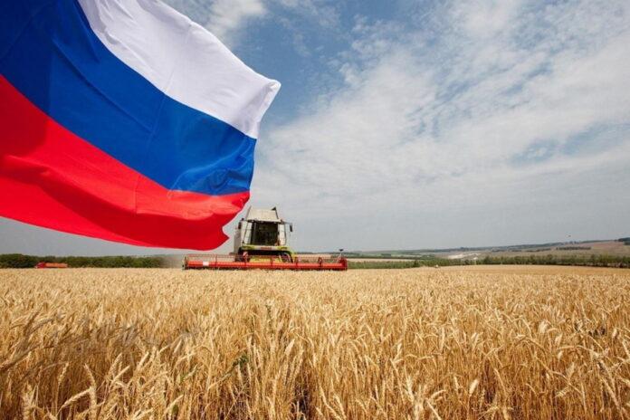 Правительство РФ утвердило изменения в госпрограмму развития сельского хозяйства