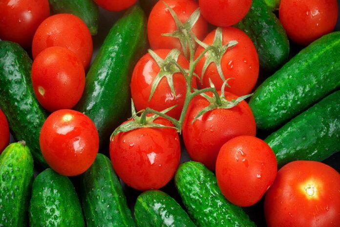 Названы причины роста оптовых цен на огурцы и помидоры в России