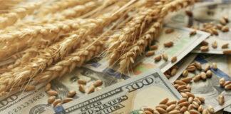 Экспортные цены на российскую пшеницу превысили $300 за тонну