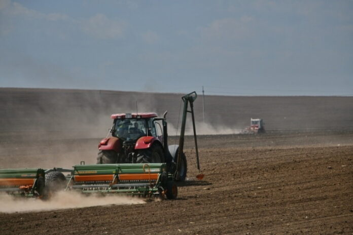 Засуха и аномальная жара повредили в Башкирии 600 тыс. га сельхозземель